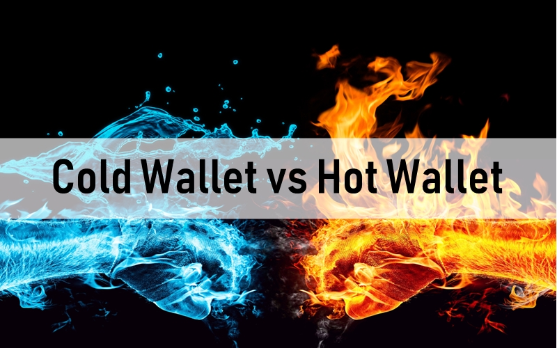 hot wallet cold wallet