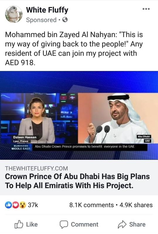 UAE investment scheme
