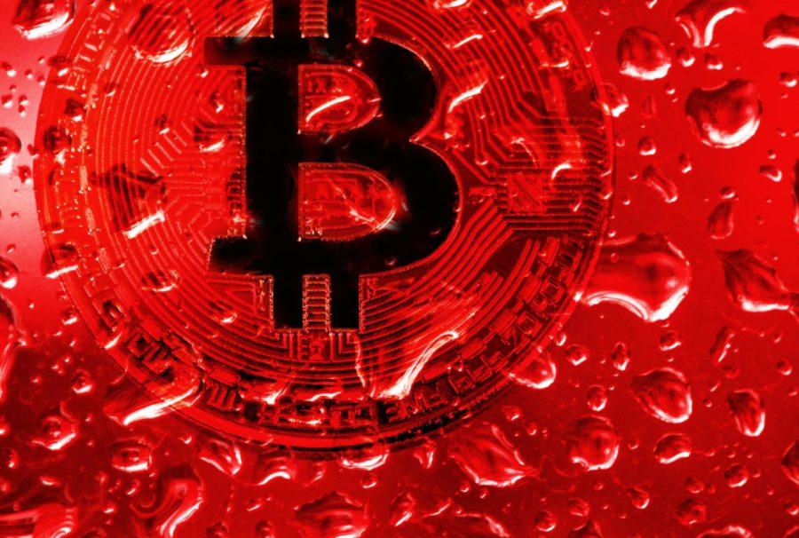 Crypto Scam Mastermind Murdered by Accomplices, CryptoCoinNewsHub.com