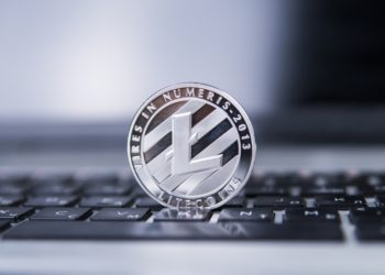 best litecoin wallet