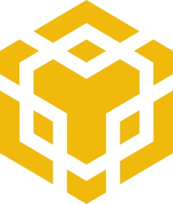 Binance DEX Icon