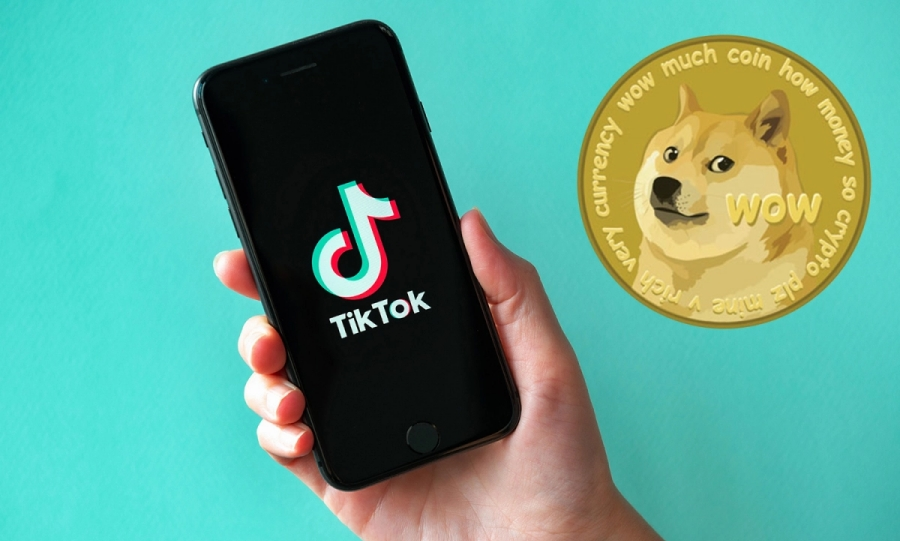 doge on tiktok